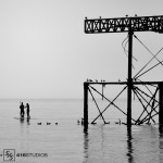 week-17-black-and-white-couple-with-gulls